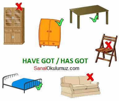 have has got kullanımı