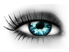 beş duyumuz göz