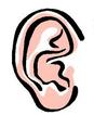 beş duyumuz kulak