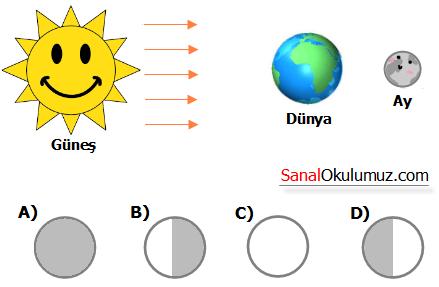 Ayın evreleri ve hareketleri