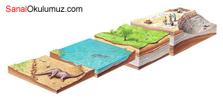 dinazor kayaç kazı
