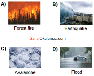 doğal afetler