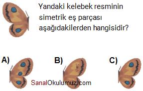 kelebeğin simetrisi